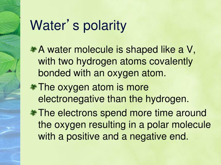 Water s polarity