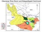 okavango river basin and makgadikgadi catchment