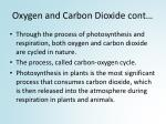 oxygen and carbon dioxide cont1