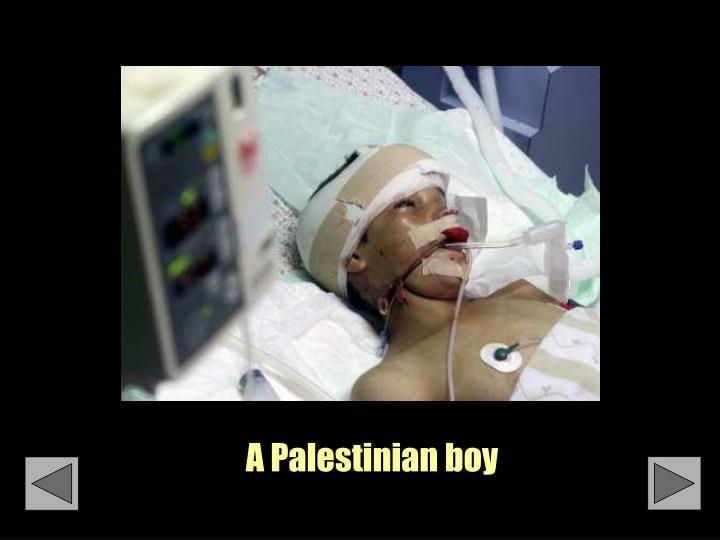 A Palestinian boy