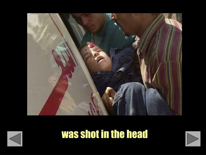 Was shot in the head