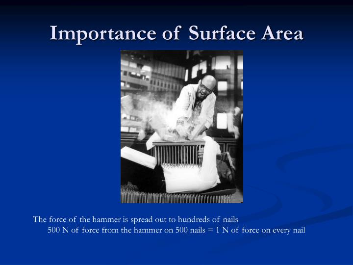 Importance of Surface Area
