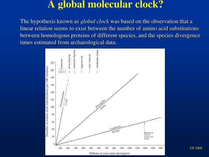 A global molecular clock?