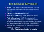 the molecular revolution