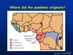 where did the pandemic originate