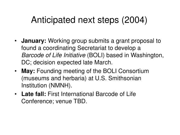 Anticipated next steps (2004)