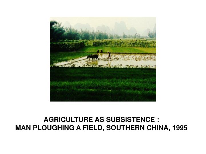 AGRICULTURE AS SUBSISTENCE :                                                           MAN PLOUGHING A FIELD, SOUTHERN CHINA, 1995