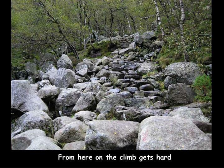 From here on the climb gets hard