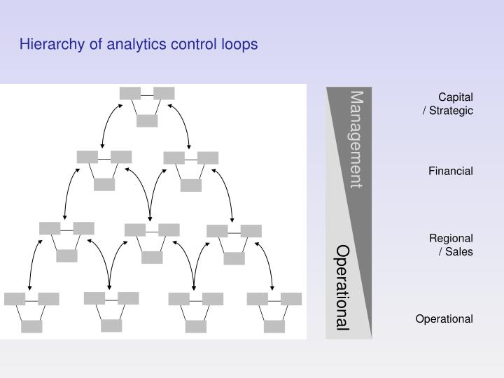 Hierarchy of analytics control loops