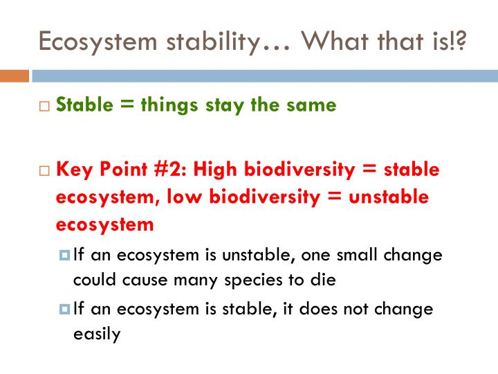 Ecosystem stability… What that is!?