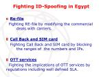 fighting id spoofing in egypt