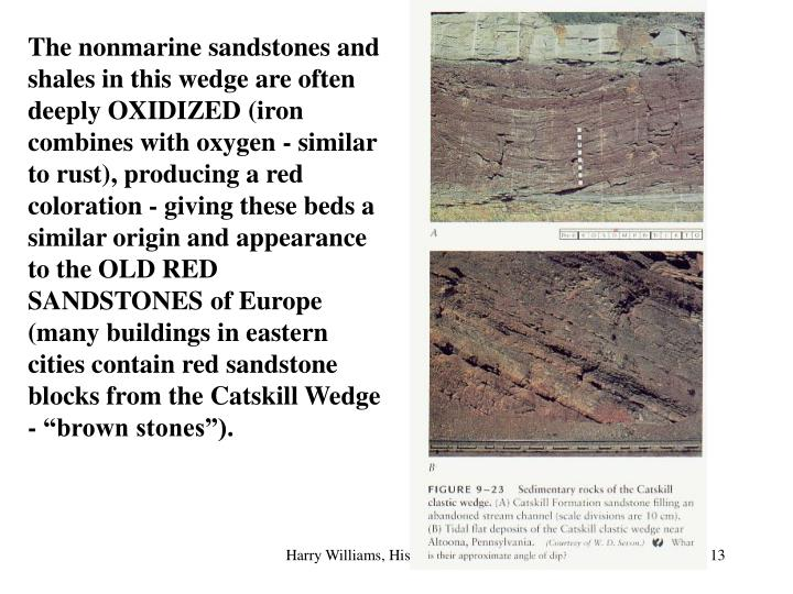 "The nonmarine sandstones and shales in this wedge are often deeply OXIDIZED (iron combines with oxygen - similar to rust), producing a red coloration - giving these beds a similar origin and appearance to the OLD RED SANDSTONES of Europe (many buildings in eastern cities contain red sandstone blocks from the Catskill Wedge - ""brown stones"")."