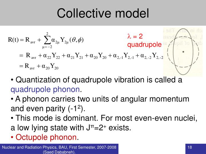Collective model