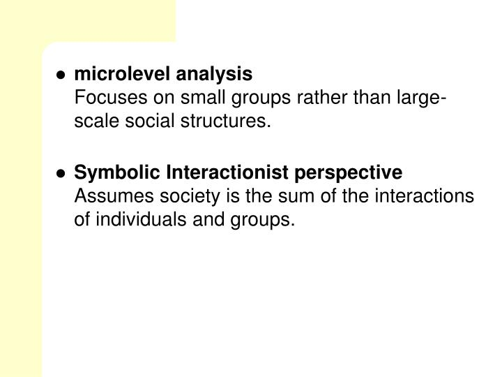 microlevel analysis