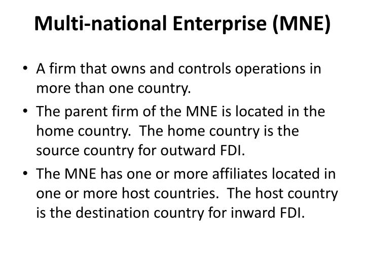 Multi-national Enterprise (MNE)