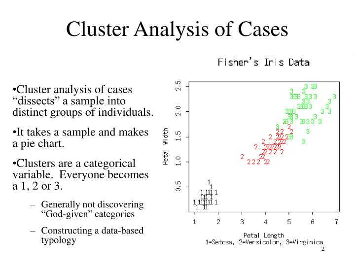 Cluster Analysis of Cases