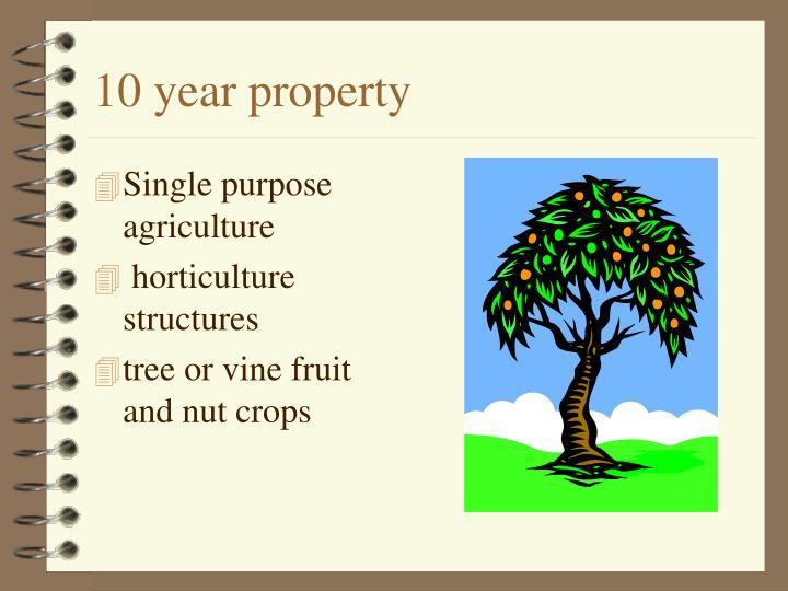 10 year property