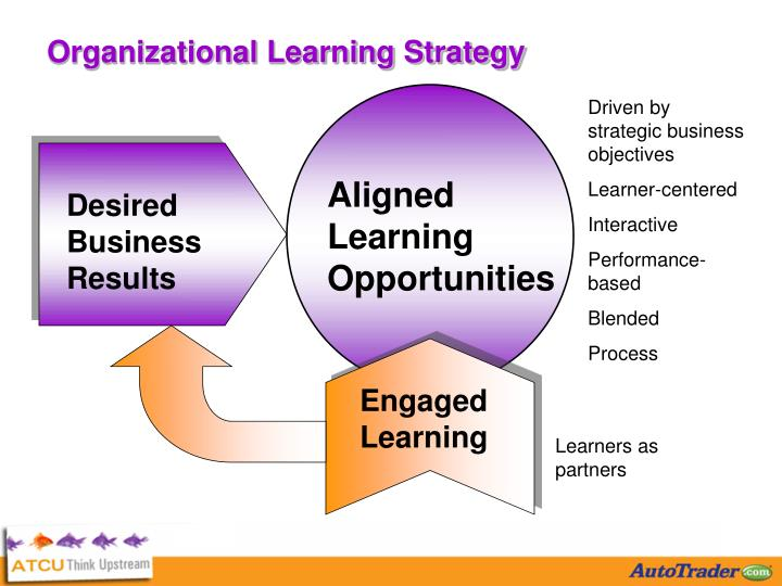 Organizational Learning Strategy