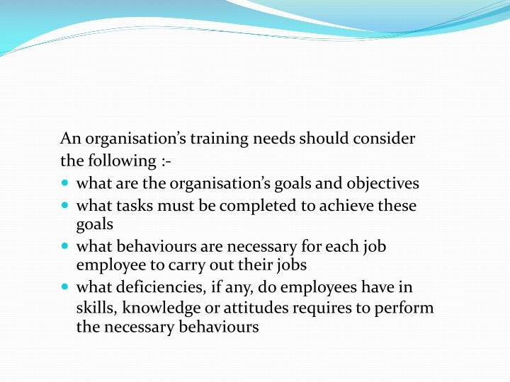 An organisation's training needs should consider