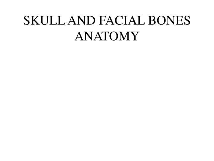 SKULL AND FACIAL BONES ANATOMY
