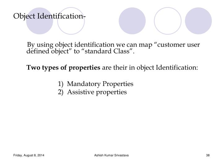 Object Identification-