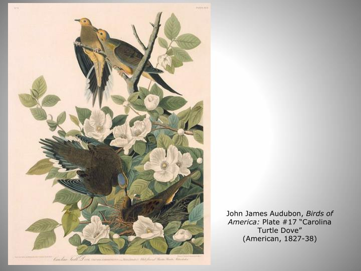 John James Audubon,