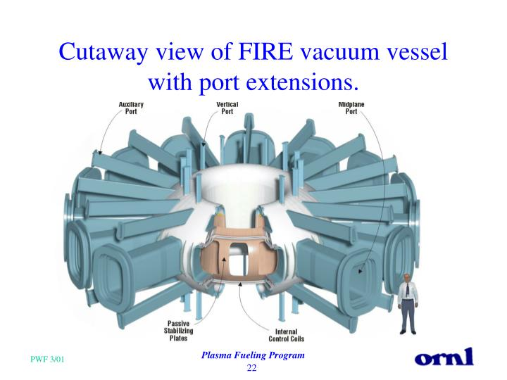 Cutaway view of FIRE vacuum vessel with port extensions.