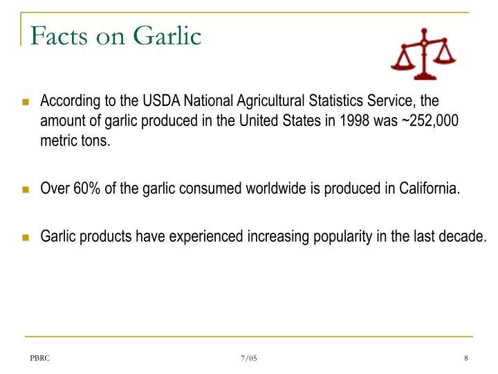 Facts on Garlic