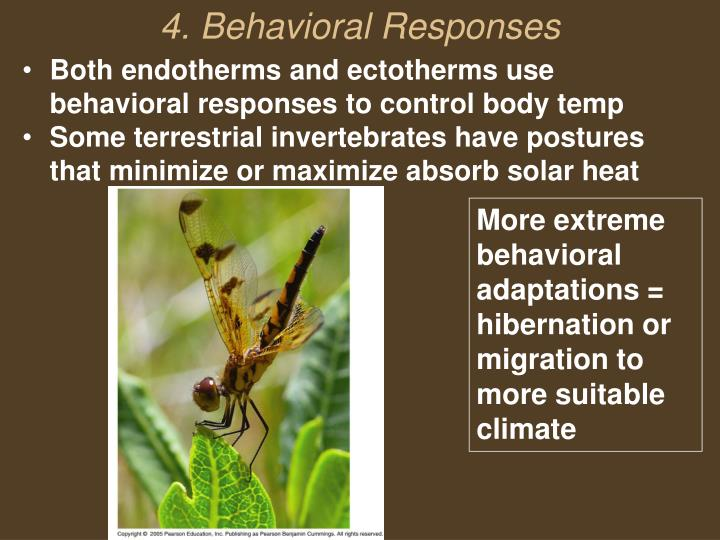 Both endotherms and ectotherms use behavioral responses to control body temp