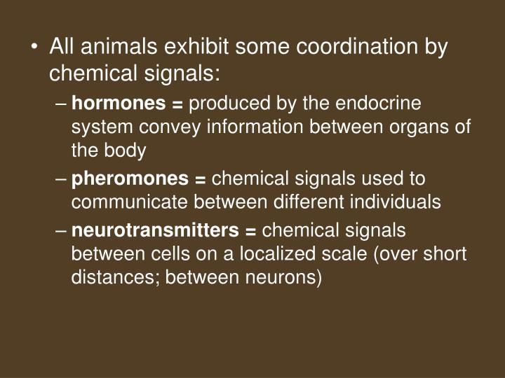 All animals exhibit some coordination by chemical signals: