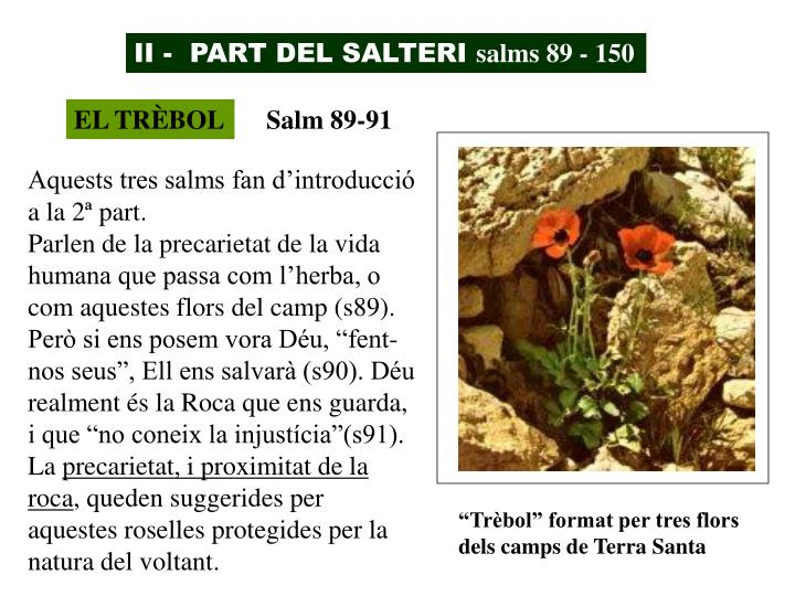 II -  PART DEL SALTERI
