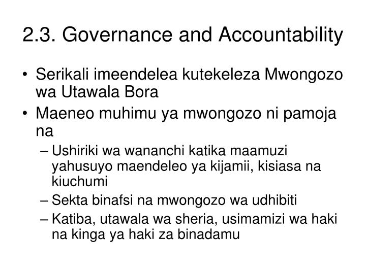 2.3. Governance and Accountability
