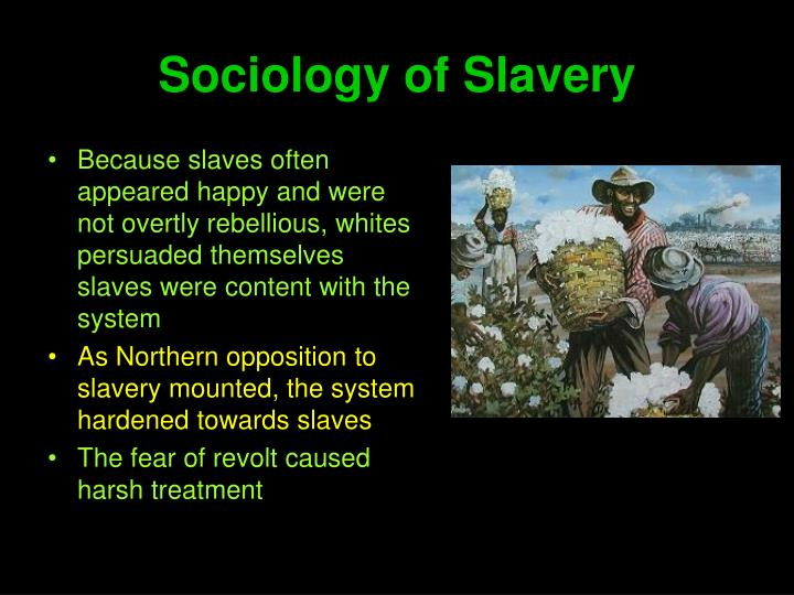 Sociology of Slavery