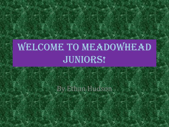 Welcome to meadowhead juniors