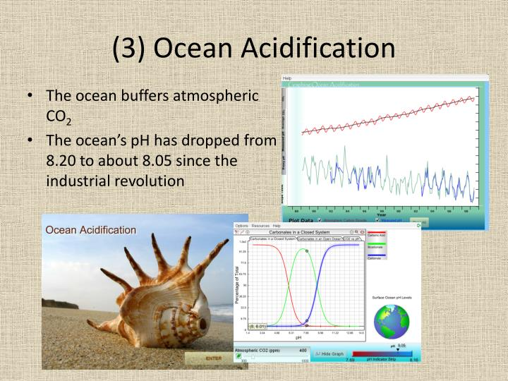 (3) Ocean Acidification