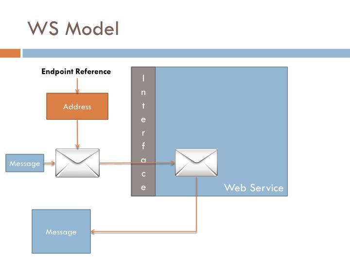 WS Model