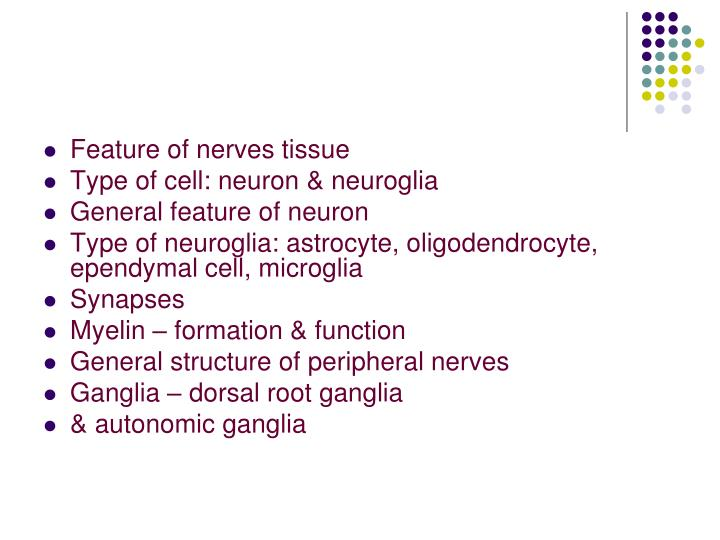 Feature of nerves tissue