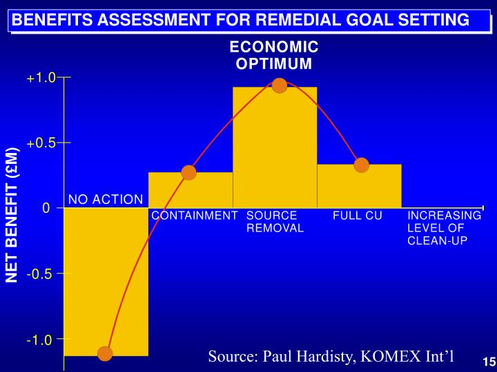 BENEFITS ASSESSMENT FOR REMEDIAL GOAL SETTING