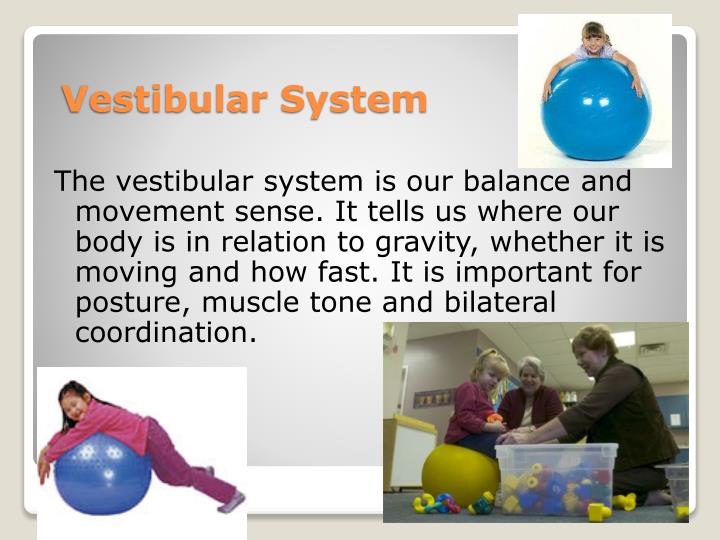 The vestibular system is our balance and movement sense. It tells us where our body is in relation to gravity, whether it is moving and how fast. It is important for posture, muscle tone and bilateral coordination.