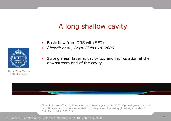 A long shallow cavity