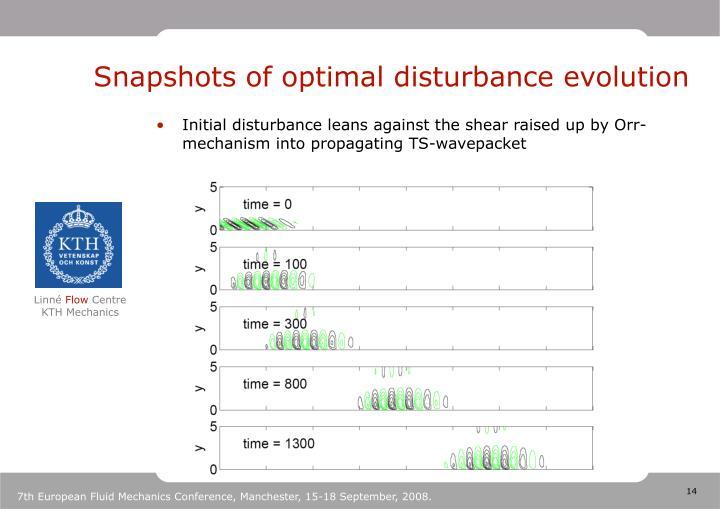 Snapshots of optimal disturbance evolution