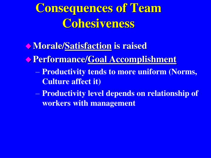 Consequences of Team Cohesiveness