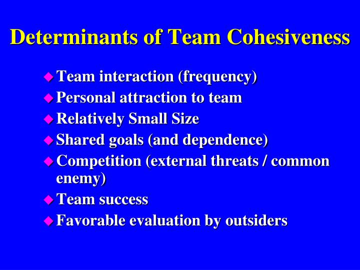 Determinants of Team Cohesiveness
