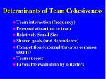 determinants of team cohesiveness