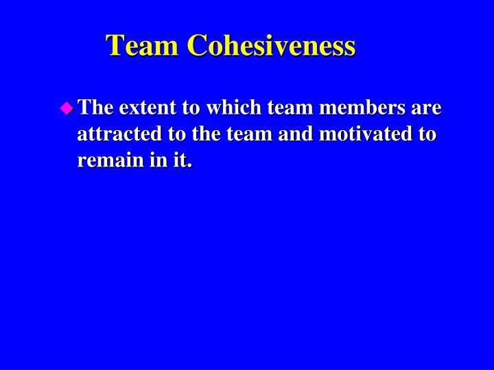 Team Cohesiveness