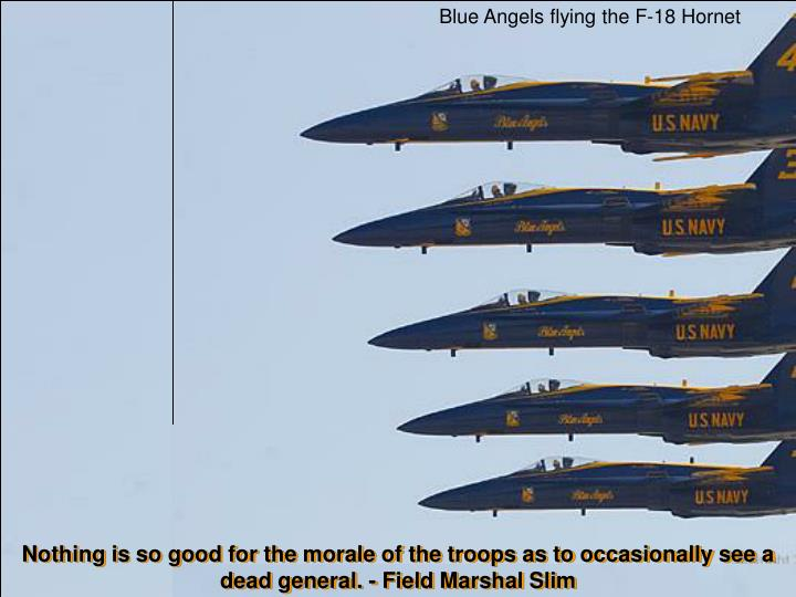 Blue Angels flying the F-18 Hornet