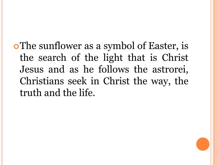 The sunflower as a symbol of Easter, is the search of the light that is Christ Jesus and as he follows the astrorei, Christians seek in Christ the way