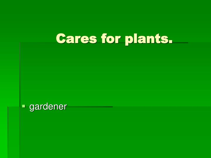 Cares for plants.