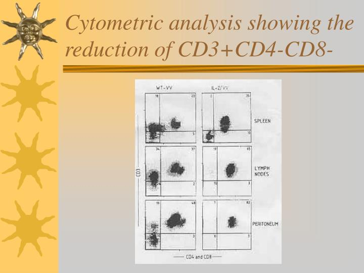 Cytometric analysis showing the reduction of CD3+CD4-CD8-