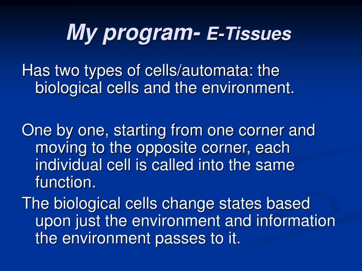 My program-